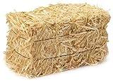 Miniature Authentic Hay Bale