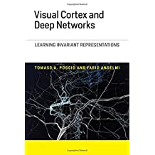 Visual Cortex and Deep Networks: Learning Invariant Representations