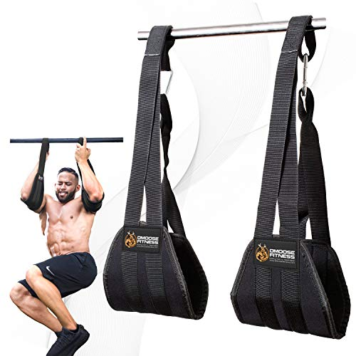 DMoose Fitness Hanging Ab Straps for Abdominal Muscle Building and Core Strength Training, Adjustable Arm Support for Ab Workouts, Padded Gym Equipment for Men and Women (Best Trx Exercises For Arms)