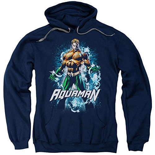 Coa Masters (Hoodie: Aquaman- Master Of The Tides Pullover Hoodie Size L)