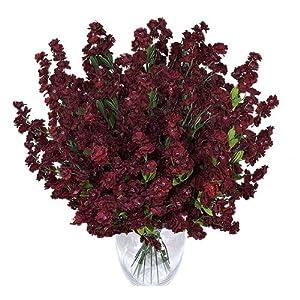 Silk Flower Arrangements 1920 Baby's Breath Gypsophila Artificial Silk Flowers _Burgundy/Red