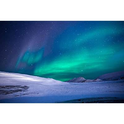 Artwap Jigsaw Puzzles for Adults Aurora Northern Lights(1000 Pieces): Toys & Games