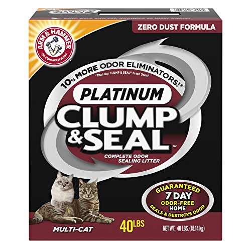Rock Kitty (Arm & Hammer Clump & Seal Platinum Litter, Multi-Cat, 40 Lbs)