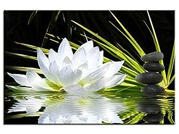 Bild Zen Design Fleur De Lotus Und Kieselsteine Top Verkauf