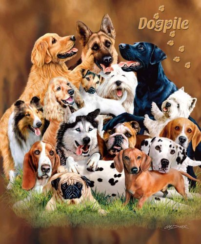 Raschel Plush Queen Blanket (Dog Pile Queen Size Plush Raschel Signature Blanket by Gardner 79x95)
