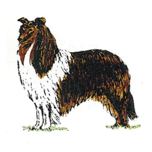 Collie Stamps - 1