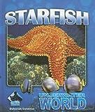 Starfish, Deborah Coldiron, 1599288133