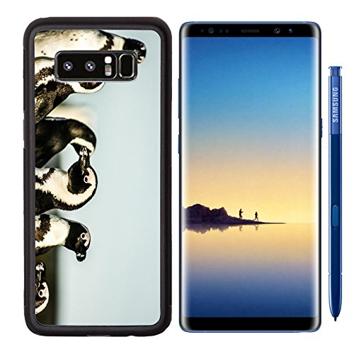 Luxlady Premium Samsung Galaxy Note8 Aluminum Backplate Bumper Snap Case IMAGE ID: 17837093 African pinguins at Bolders Beach in South Africa