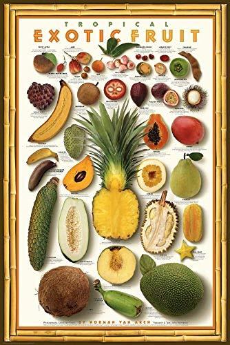 (Laminated Tropical Exotic Fruit Mango Food Kitchen Papaya Gourmet Poster Printint 24x36 )