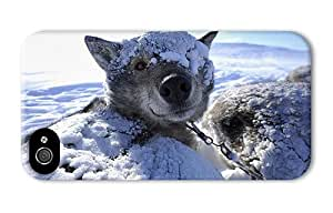Hipster cassette iPhone 4S case sled dog husky wake up PC 3D for Apple iPhone 4/4S