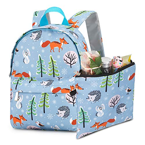 HooyFeel Kids Cute Backpack Lightweight Preschool Toddler Backpack for 3-7 Years Old Boys Girls with Cooler Lunch Snack Bag ()