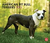 American Pit Bull Terriers, For The Love Of 2013