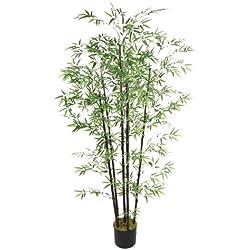 "Laura Ashley VHX106 72"" Tall Bamboo Tree, Black Poles (36X36X72 H) Tree"