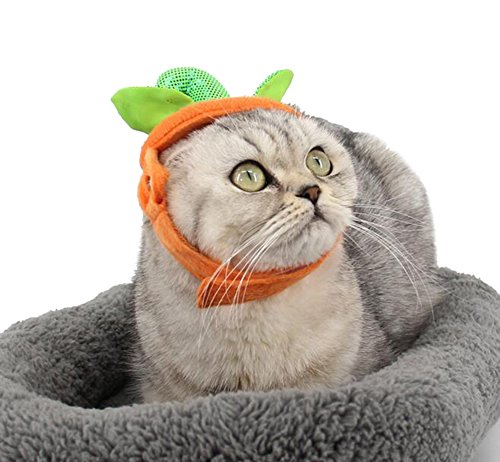 Eastcities Pet Halloween Decoration Pumpkin Hat for Cats and Puppies