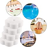 Chuangdi 24 Pieces Oil Absorbing Scum Sponge for