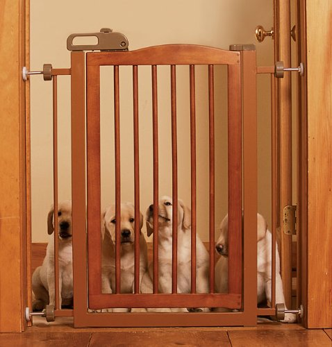 Orvis One-touch Pet Gate, White, Reg (One Touch Gate)