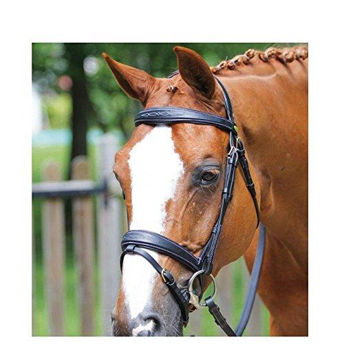 Bridon Auteuil protanner Avana Cavallo