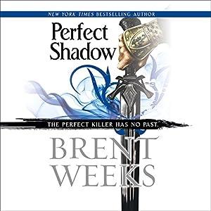 Perfect Shadow Audiobook