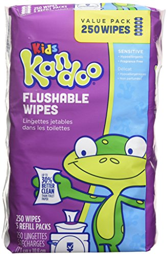 Kandoo Flushable Biodegradable Training and Kids Cleansing Wet Wipes with Moisturizing Lotion Refills, Sensitive, 250 Count