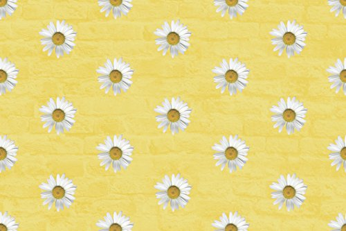 Home Comforts LAMINATED POSTER Daisy Daisy Background Poster