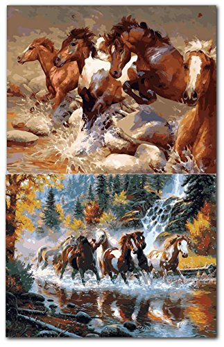 Crafty Fox Paint By Number for Adults: Wild Horses 16 x 20 Inches (Set of 2)