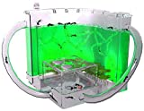EveryWell Light-up Ant Farm, Educational & Learning Nature Science Kit with Eatable Clear
