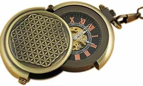 VIGOROSO Men's Retro Archaize Bronze Unique Hide Carved Steampunk Free Chain Mechanical Pocket Watch in Gift Box