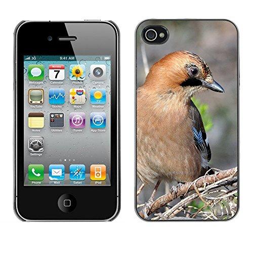 Premio Sottile Slim Cassa Custodia Case Cover Shell // F00007904 Mt.Gaewha // Apple iPhone 4 4S 4G