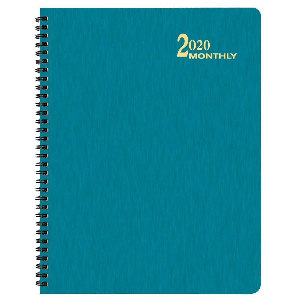 Amazon com : 2020 Turq Shimmer Lg Time Mthly Planner, by