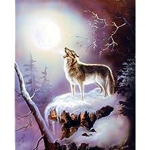 Howling Wolf Warrior Song G Femrite Native American Wall Decor Art Print Poster (8x10)