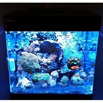 Amazon Com Solar Flare Red Sea Max 130d 45w Led Light