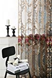 ZWB High-grade Sheer Curtains, Embroidery Transparent Voile With Rod Pocket Process For Living Room , 1 Panel W39xL84 inch