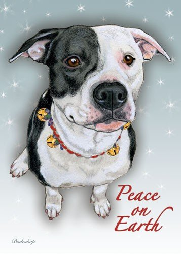 Pipsqueak Productions C723 Pitbull Black & White Christmas Boxed Cards - Pack of 10 by Pipsqueak Productions