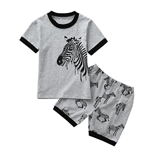 (Lurryly 2Pcs Toddler Baby Boys Pajamas Cartoon Zebra Print Tops+Shorts Outfits Set 2-7T (7T, Label Size:7T,)