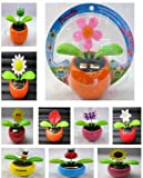 Assorted Solar Dancing Flowers Case Pack 120 , Kid ,Toy , Hobbie , Nice Gift