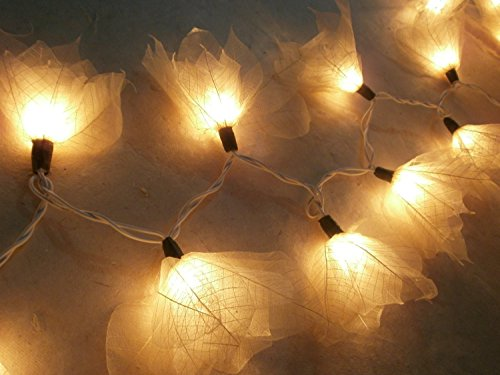 Copter Shop 2 Sets of 20 Natural Cream Flowers Handmade From Para Leaf – Lighting String Lights Set Lamp Decoration Patio Home Living Room Yard Garden…