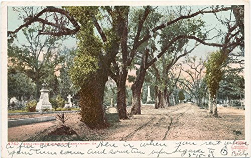 Vintage Postcard Print | Bonaventure Cemetery, Savannah, Ga, 1900 | Historical Antique Fine Art Reproduction - Cemetery Postcard