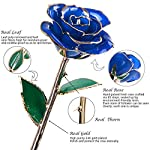 Sinvitron-Real-Rose-Flower-with-Long-stem-Dipped-in-24k-Gold-with-Stand-and-Gift-Box-Never-Fade-Ideal-Valentiness-DayWedding-AnniversaryMothers-DayBirthday-for-her
