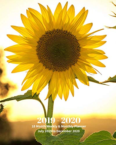 2019 - 2020 | 18 Month Weekly & Monthly Planner July 2019 to December 2020: Yellow Sunflower Wildflower Garden Vol. 4 Monthly Calendar with U.S./UK/ ... Holidays- Calendar in Review/Notes 8 x 10 in.