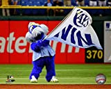 "Raymond Tampa Bay Rays 2014 MLB Mascot Action Photo (Size: 8"" x 10"")"