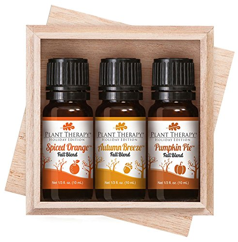 Plant Therapy Fall Holiday Blend Synergy Gift Set