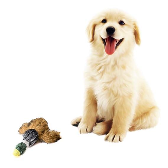 Hihey Juguete para Perros Pato Mascota Perro de Peluche Juguete ...