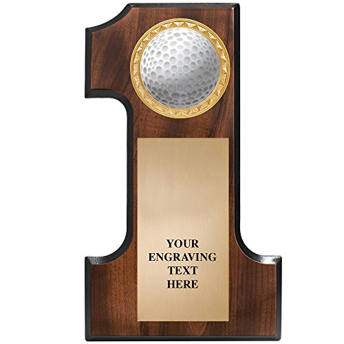 Hole In One Plaque - 7x12 Golfball Plaque With Engraved Plate