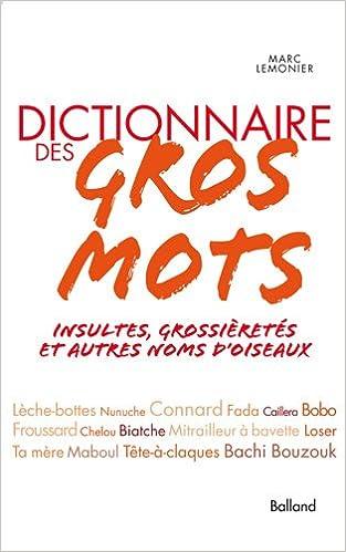Amazon Fr Dictionnaire Des Gros Mots Insultes
