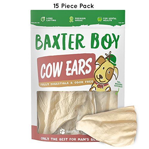 Long Treat Lasting (Baxter Boy Prime Tender & Hearty Thick Cow Ears Odor Free Dog Treats, (15 Pack) – Premium Grade Long Lasting All Natural and Unflavored Gourmet Dog Treat Chews – Fresh & Savory Low-Calorie Treat)