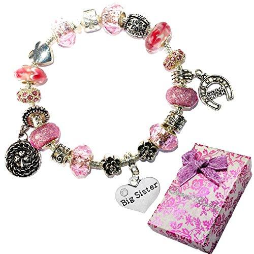 Charm Buddy Big Sister Pink Purple Crystal Good Luck Pandora Style Bracelet With Charms Gift (Big Sister Italian Charm)