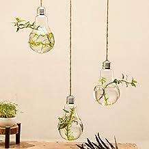 3 pack Hanging Light Bulb Shape Glass Vase Flower Plant Pot Container Planter Terrarium Home Decoration