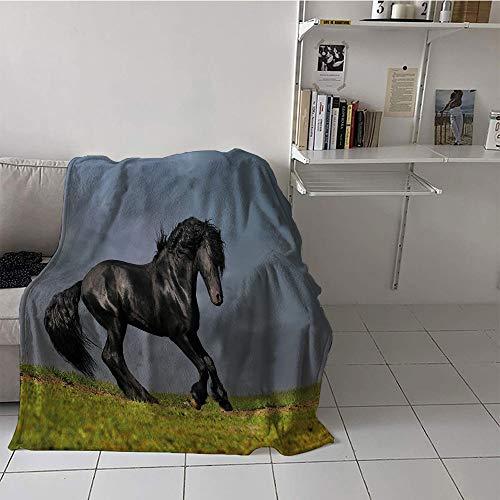Khaki home Children's Blanket Beach Digital Printing Blanket (60 by 70 Inch,Horse Decor,Black Friesian Stallion Gallop in Sunset Stormy Weather Nature Outdoors,Green Black Grey
