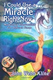 img - for I Could Use a Miracle Right Now! Miraculous Intervention for Difficult Times book / textbook / text book