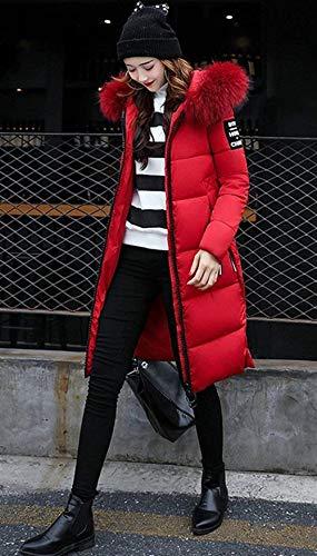 Piumino Cappuccio Lunga Libero Fit Outerwear Colore Giacca Hipster Slim Chic Manica Puro Autunno Imbottitura Con Tempo Cappotto Rot Trapuntato Elegante Calda Vintage Donna Invernali Cute EZqX1